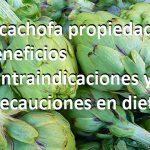 Alcachofa propiedades beneficios contraindicaciones y precauciones en dieta… de la Alcachofa.