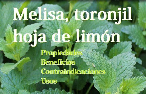 propiedades melisa, limonera