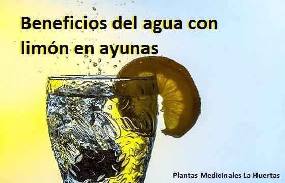 zumo o jugo de limón en ayunas beneficios para nuestra salud