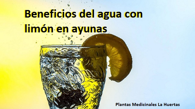 agua con limón en ayunas beneficios para nuestra salud