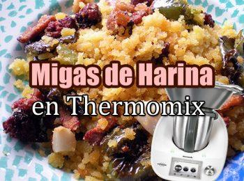 migas de harina en thermomix portada