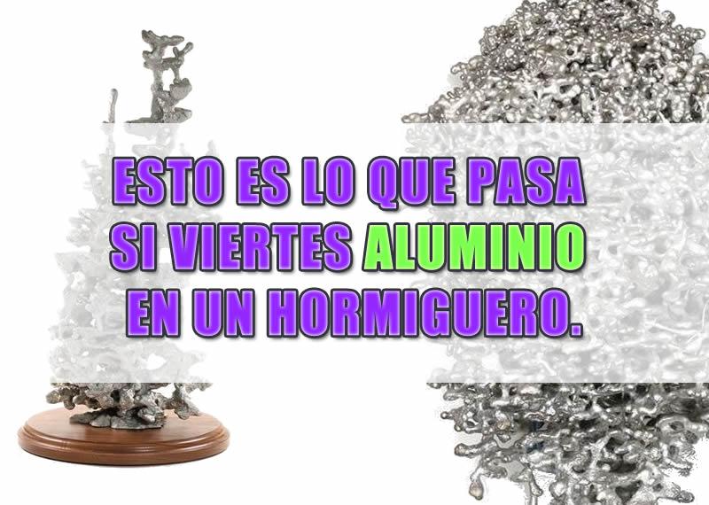 Aluminio fundido en un hormiguero