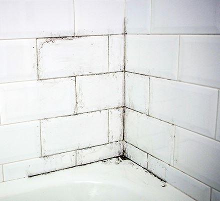 Remedio casero para limpiar las juntas del azulejo - Limpiar juntas azulejos ennegrecidas ...
