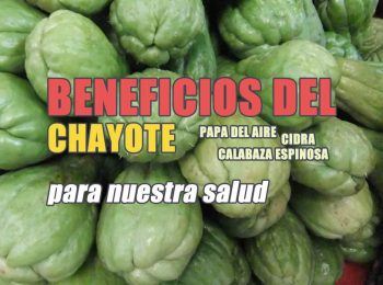 beneficios del chayote para la diabetes y el colesterol