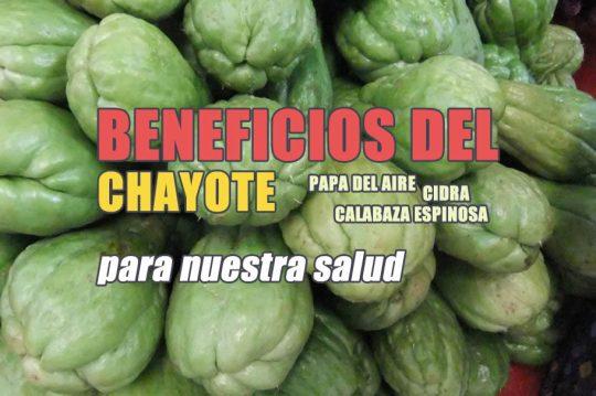 beneficios del chayote para la diabetes y el colesterol