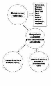 esquema de ácido úrico alto