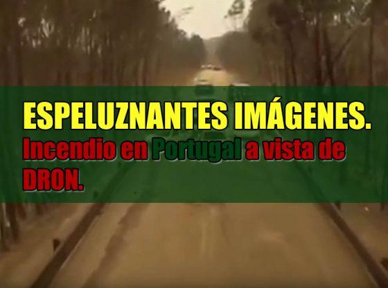 incendio en portugal imagenes