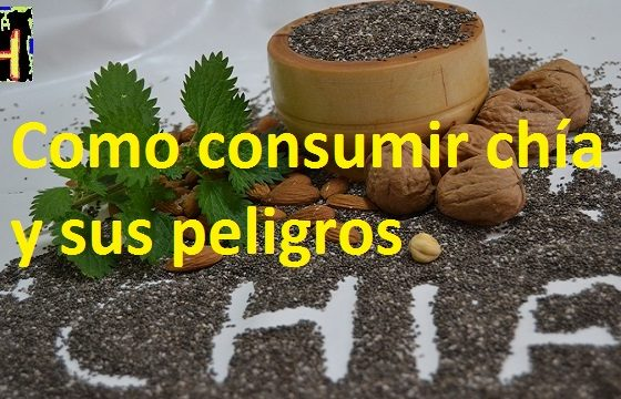 como consumir chia y sus peligros la forma correcta de consumir chia.