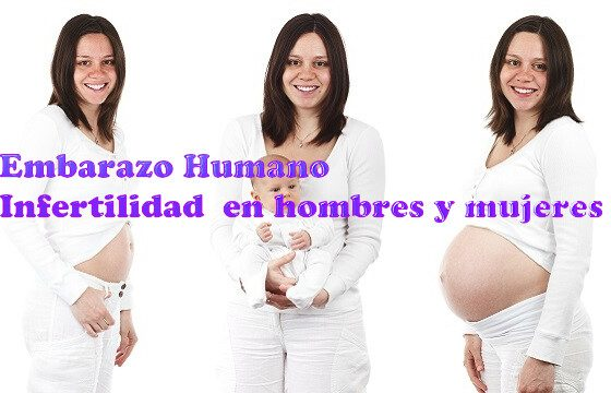 infertilidad hombres y mujeres