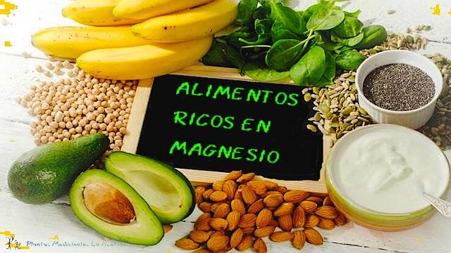 el magnesio beneficios