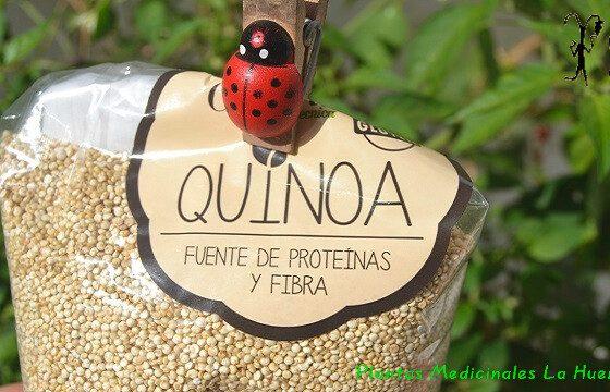 Quinoa fuente de proteínas y fibra, alimentos sin gluten. Propiedades y beneficios de la quinoa como preparar quinoa antes de cocinarla ideas de recetas quinoa propiedades beneficios