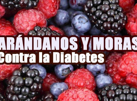 arandanos y moras para la diabetes