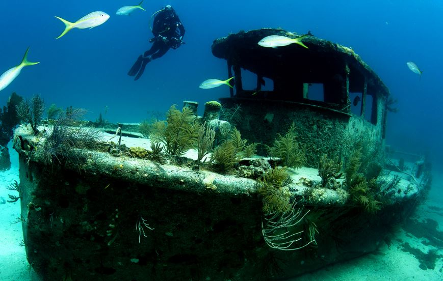 barco hundido bahamas