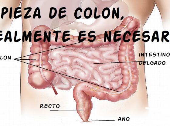 limpieza de colon intestinos es necesaria