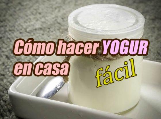 cómo hacer yogur en casa