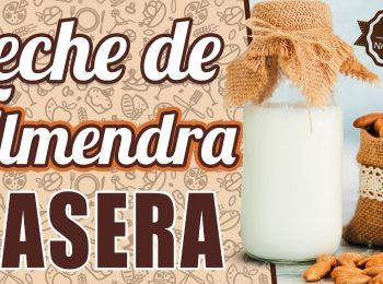 leche de almendra bebida vegetal propiedades de la almendra