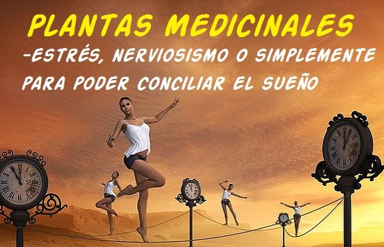 estres ansiedad plantas medicinales remedios caseros naturales
