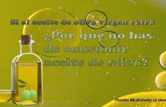 que aceite de oliva consumir diferencias de los diferentes tipos de aceite de oliva