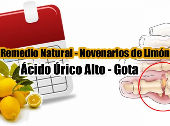 NOVENARIOS DE LIMÓN PARA EL ÁCIDO ÚRICO ALTO