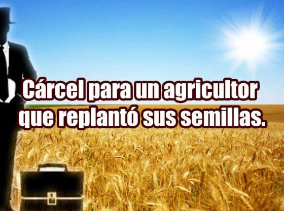 carcel para un agricultor que replanto sus semillas