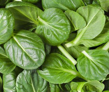 alimentos más alcalinos espinacas