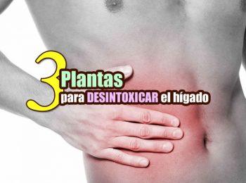desintoxicar el hígado con remedios naturales portada 2