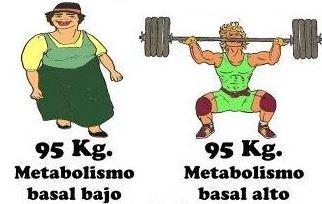 quemagrasa metabolismo basal