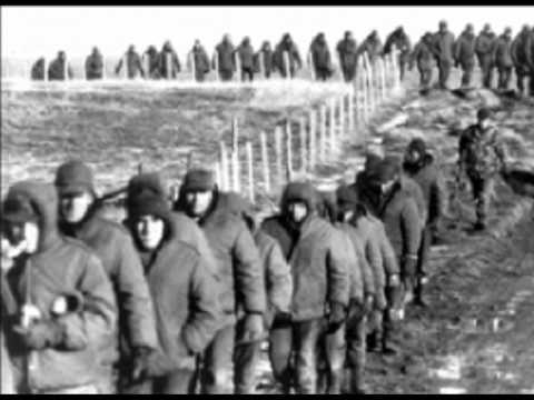Guerra de la Islas Malvinas
