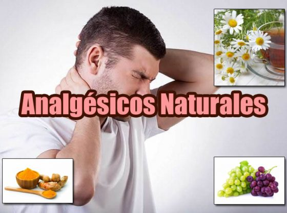 analgésicos naturales