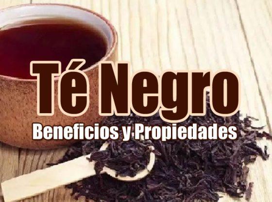 beneficios del te negro para la salud portada