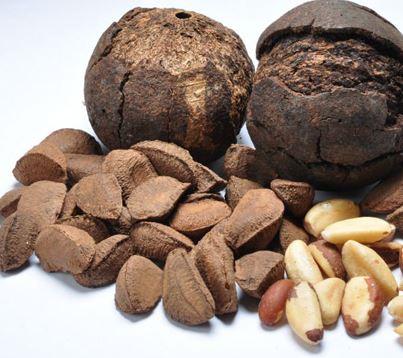 nuez de brasil alimentos para reforzar la salud