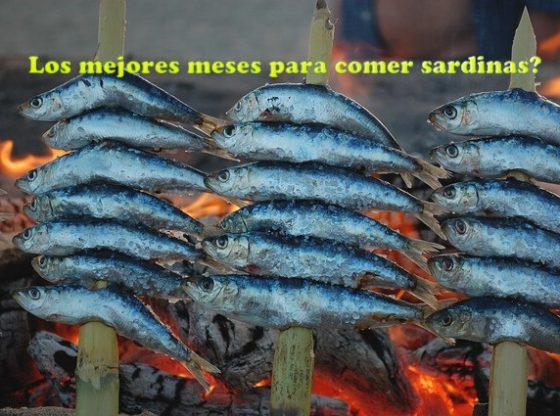 sardina espeto mejor epoca comprar comer sardinas los meses con erre r son los idoneos