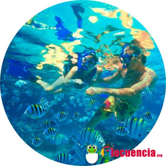 actividades acuaticas en isla mujeres mexico