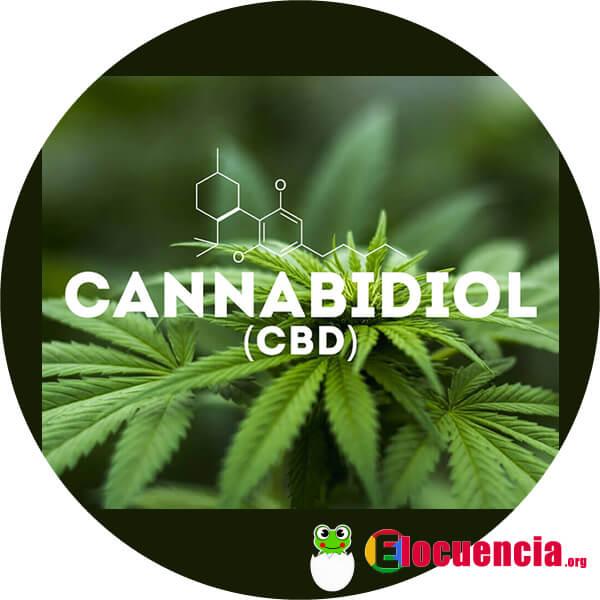 CBD usos medicinales