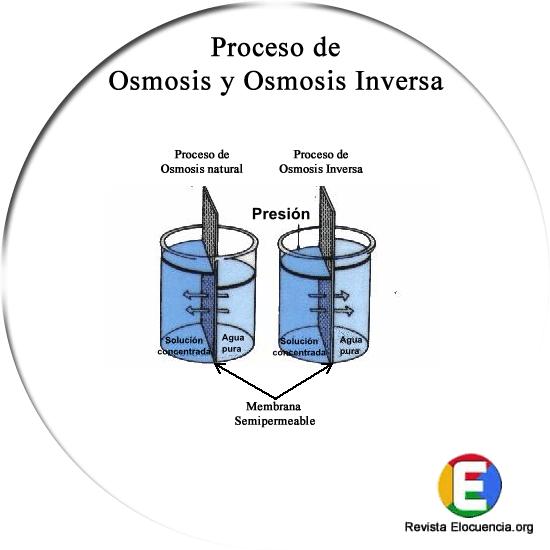 osmosis y osmosis inversa. Esquema