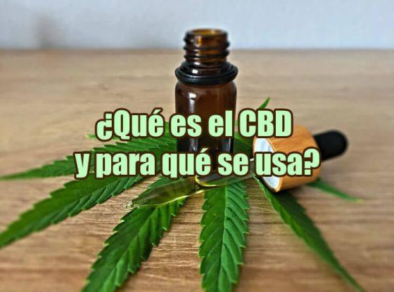 imagen de una hoja de cannabis y un frasco con CBD