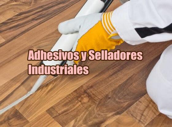 Imagen de portada de artíulo sobre adhesivos y selladores industriales en la que aparece un hombre con una pistola de sellado usandola sobre un piso de madera